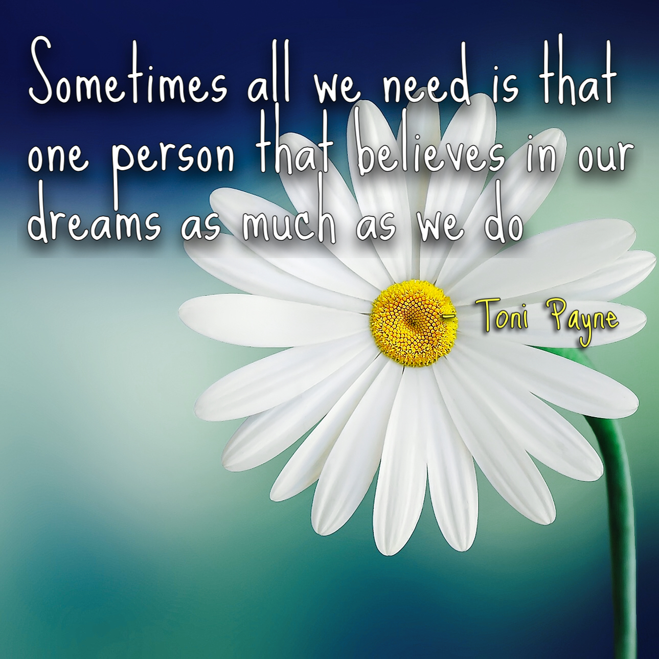sometimes all we need quote