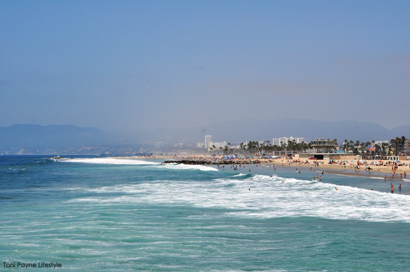 Things to do at Venice beach