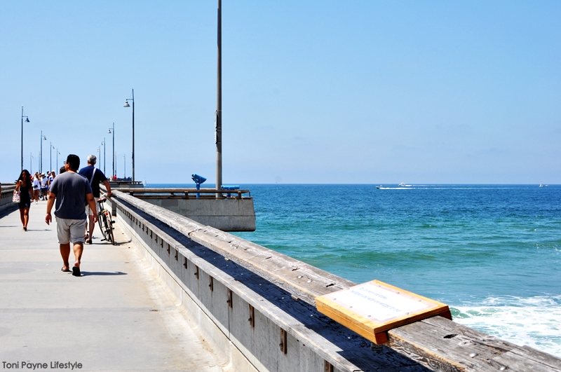 Things to do at Venice beach - pier